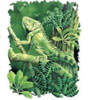 Green Gecko Lizard HEAT PRESS TRANSFER for T Shirt Sweatshirt Tote Fabric #519a