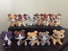 Littlest Pet Shop LPS 11 Collies 67,272,363,893,1194,1262,1542,1676,2210,2452 +
