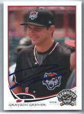 Grayson Greiner signed 2016 Erie Seawolves baseball, Detroit Tigers autograph