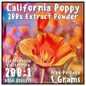 California Poppy (Eschscholzia Californica) 200x Extract Powder [5 Grams]