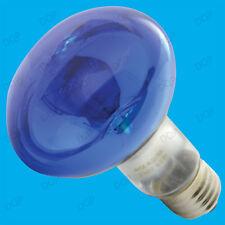 Lampadine blu per l'illuminazione da interno E27