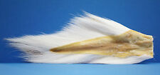 Bucktail Northern Large Wapsi U.s.a. FLUO WEISS