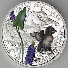 Canada 2016 $20 Baby Animals: Common Loon 1 oz Pure Silver Color Proof Coin