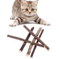 5pcs Pure Natural Catnip Chew Sticks For Pet Cat Dental Care Cat Teeth Cleaning