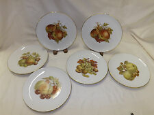 Winterling Bavaria Set of 6 Dessert Salad Plates - Various Fruits Center Design