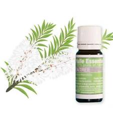 Tea Tree BIO 10 ml Huile essentielle véritable pure et naturelle certifiée HECT