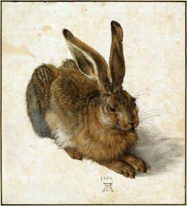 Albrecht Durer Durer Hare Poster Reproduction Paintings Giclee Canvas Print