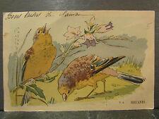 cpa fantaisie oiseaux branche fleurie clochettes