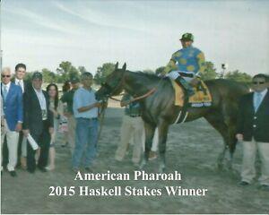 "2015 - AMERICAN PHAROAH in the Haskell Stakes Winners Circle - 10"" x 8"""