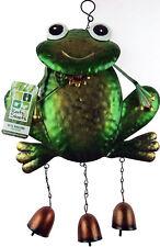 Surfin/' Frog Metal Quirky Fun Garden Ornament GGDPQ1328