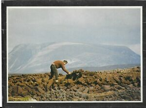 Unused Continental Size Picture Postcard Of Stacking Turf In Donegal, Ireland