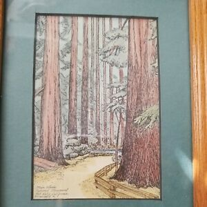 Vintage Small Print Eileen David Muir Woods California Signed Framed With Mat