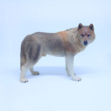 """1/6 Scale Brown Wolf  Model Toy Figurine For 12""""in Action Figures Toy Soldier"""