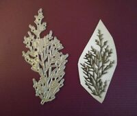 Sizzix Die Cutter Thinlits  Christmas Foliage #6  fits Big Shot