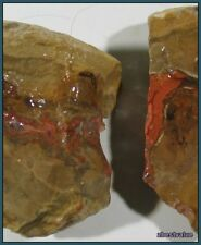 zbv- Excellent Teepee Tee Pee Agate Rough!!