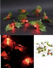 60 LED Holly Berry Red Green LED Indoor Outdoor Xmas Lights Static Function