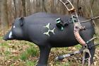 Archery Target 3D Hog Pig Arrow Practice Field Tip Broadhead Bow Hunting Solid