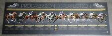 Progression of Perfection Ten of the Greatest Melbourne Cup Winners Print ONLY