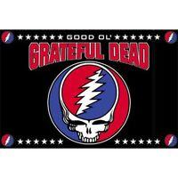 GRATEFUL DEAD - GOOD OL - PILLOW CASE - BRAND NEW - BEDDING SKULL LOGO 0045