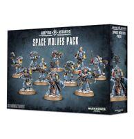 Space Wolves Pack Warhammer 40K NIB Flipside