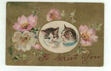 """Antique 1908 Embossed Cat Kitten Post Card  - """"To Greet You"""" Gold Foil Flowers"""
