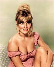 SHARON TATE charming lingerie 1964 MGM studio color 8x10 portrait