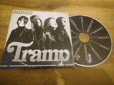 CD Indie Tramp-Indigo (12) canzone PROMO killer COBRA REC CB