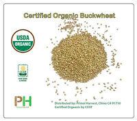 Certified Organic Buckwheat GROATS non-GMO, Vegan, Bulk