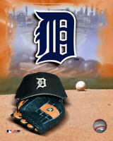Detroit Tigers 8 X 10 Photo AAGR090 zzz