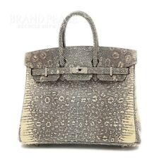 Hermes Birkin 25 Lizard Ombre Silver Fittings D-Engraved Secondhand Bp _40196