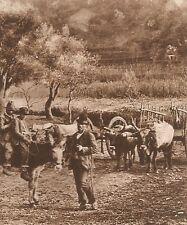 G0022 Un gruppo di paesani italiani - Stampa antica del 1923 - Old Print