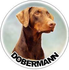 2 Dobermann Car Stickers Design No 2 By Starprint - Auto combined postage