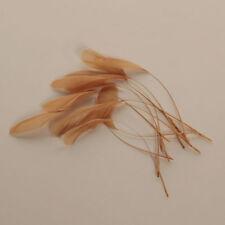 Beige Caramel Feathers for Hair Hat Fascinator UK Diamond Craft (x12)