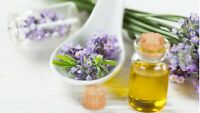 Lavender Sage & Rosemary 1 FRAGRANCE oil simmer Candle soap making W DROPPER