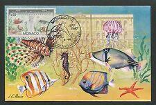 MONACO MK 1960 OZEANOGRAPHISCHES MUSEUM FISCHE FISH MAXIMUM CARD MC CM d5859