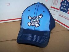 WILMINGTON BLUE ROCKS  MINOR LEAGUE BASEBALL HAT/CAP    YOUTH  FITTED  OSFM