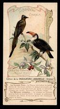 CPA chocolaterie AIGUEBELLE-le monde des oiseaux-PASSEREAUX 3
