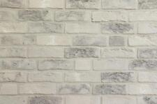 Handform-Verblender WDF BH1036 hellgrau nuanciert Klinker Vormauersteine