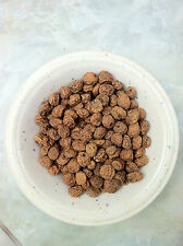 US Tigernut Cyperus esculentus Chufa 500 Seeds Erdmandel sativus TIGER NUT GRASS