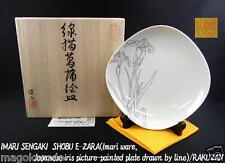 o4812,Imari ,TAKUO.Y, the Japanese iris picture plate.