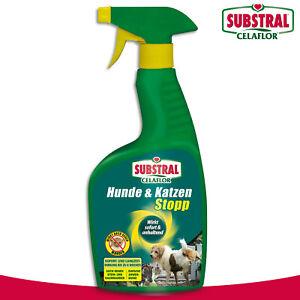 Substral Celaflor 500 ml Hunde & Katzen Stopp
