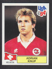 Panini - USA 94 World Cup - # 45 Adrian Knup - Helvetia (Green Back)