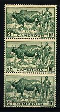 CAMEROUN - CAMERUN - 1946 - Zebù con pastore -