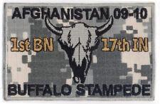 OEF 1-17 Infantry Regiment ACU Hook/Loop: Afghanistan 2009-2010 SKULL Design
