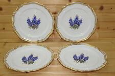 "Spode Y7766 Texas Bluebonnets (4) Salad Plates, 7 3/4"" Stafford Shape"