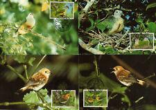 COOK Islands 1989 WWF Oiseaux Birds Yv 994/997 Cartes Maxi