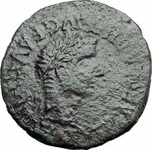 TIBERIUS 14AD Calagurris Spain Ancient Roman Coin BULL of Biblical Times i57884