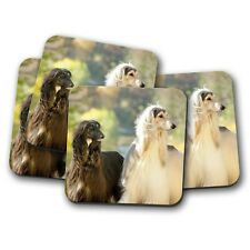 4 Set - Beautiful Afghan Hounds Coaster - Canine Dog Lovers Animals Gift #16056