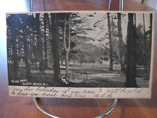 """1906 """"In The Park, Olcott Beach, N.Y."""" Postcard"""