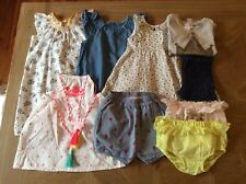 Seed Baby Size 1 Girls Clothing dresses bloomers rompers, shorts leggings top
